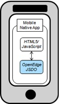 Native Mobile App inside Native Wrapper