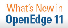 What's New in OpenEdge 11
