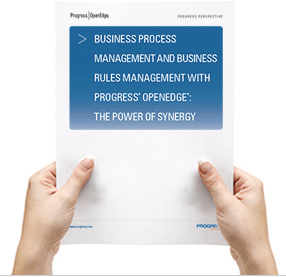business process management whitepaper