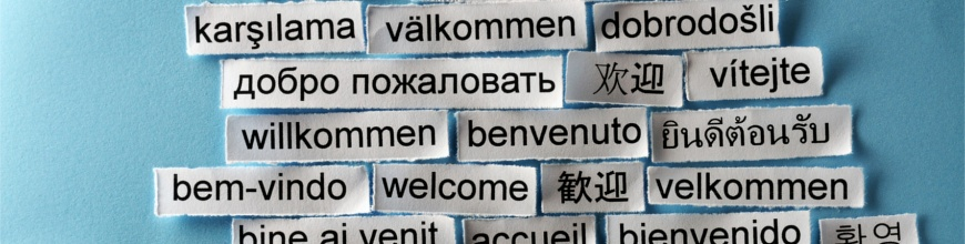 Improved Language and Card Support Now in Rollbase 4.3 870x220