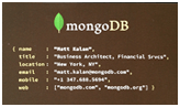MongoDB JSON Business Card
