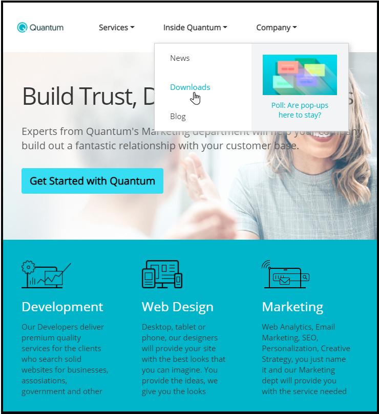 .net-core-service-demo-megamenu